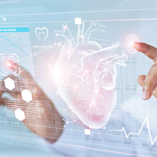 Hands touching 3D virtual screen image of the heart