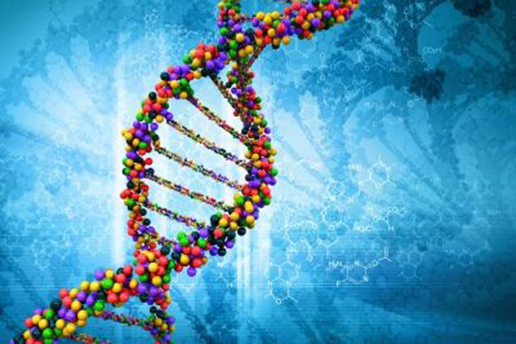 Colorful strand of DNA on a blue background